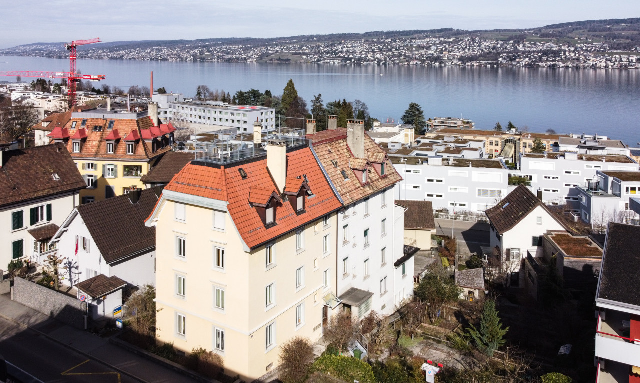 Buy it Investment property in Zürich Horgen