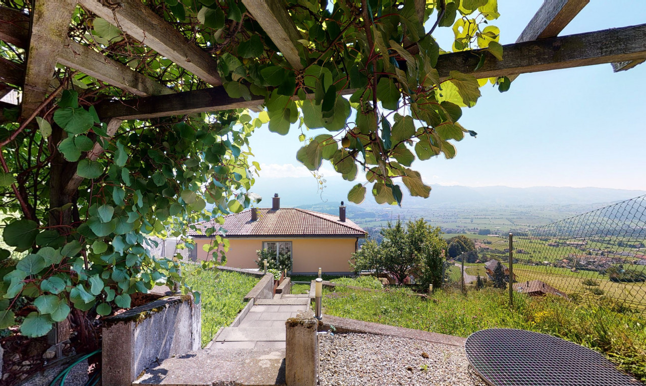 Kaufen Sie Haus in St. Gallen Uetliburg