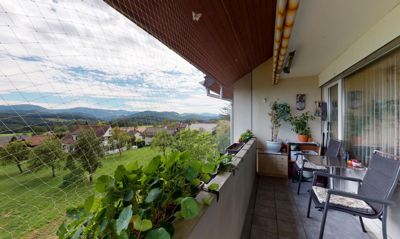 Kaufen Sie Wohnung in Basel-Landschaft Seltisberg