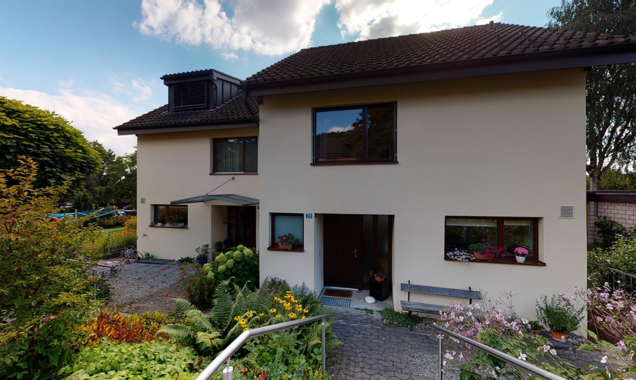 Kaufen Sie Haus in Zürich Mettmenstetten