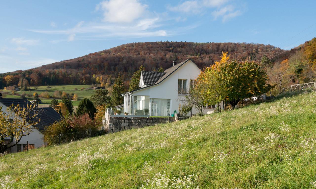Achetez-le Maison dans Schaffhouse Löhningen