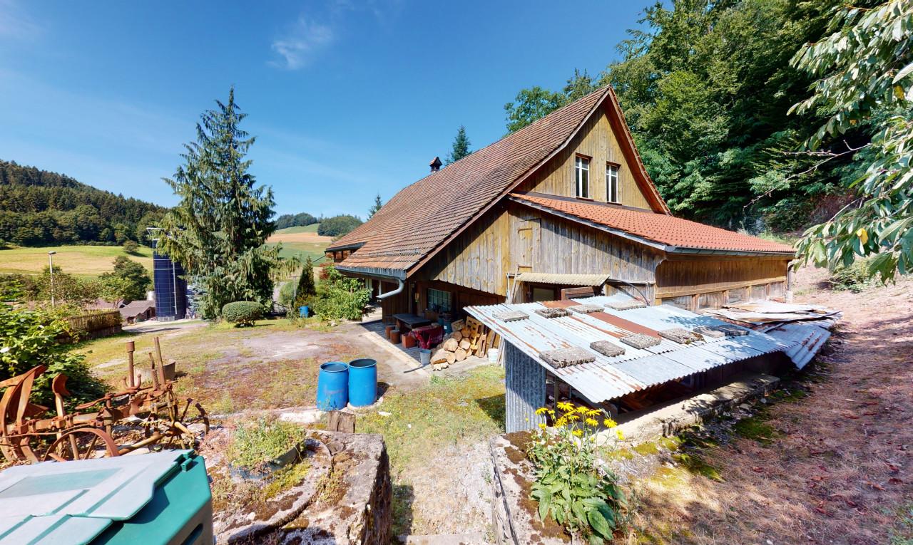 Buy it House in Argovia Bottenwil