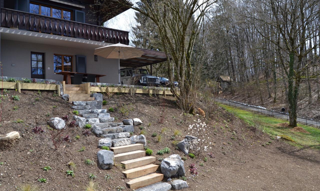 Buy it House in Vaud Jongny
